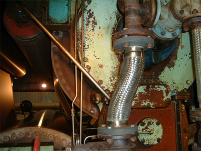 Steam Piping Flexible
