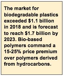 bio base polymers market size